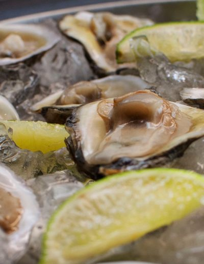 Tarascos Oysters